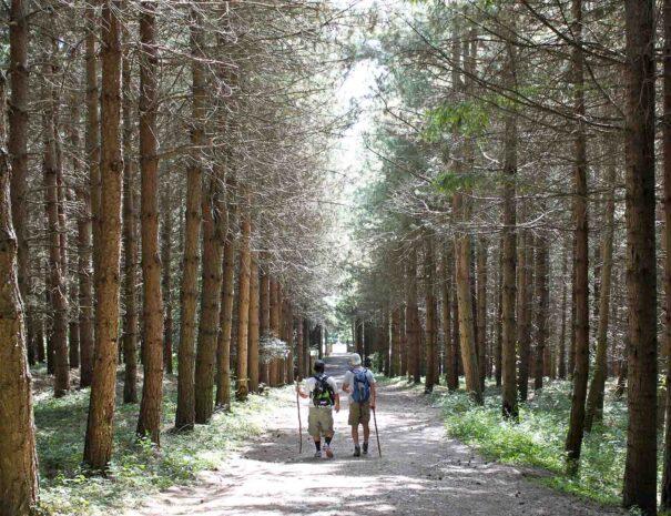 itinerario-montesenario (1)