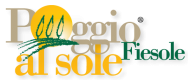 Farmhouse in Fiesole near Florence,Italy:Poggio al Sole Agriturismo